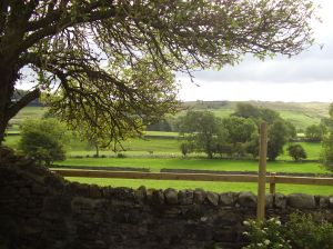 View over English countrysideover