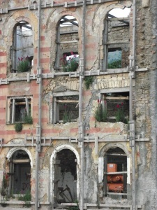 Wildflowers blooming in a shelled building