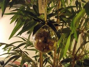 Chocolate stars ornament